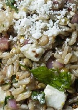 Lentil and Brown Rice-Quinoa Salad